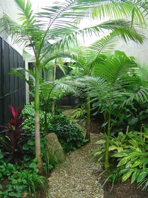 small tropical landscaping ideas small house
