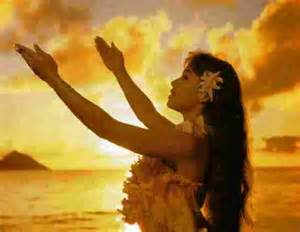 absorb the spirit of hula aniki designs marketing