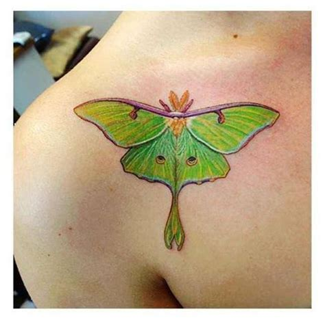 tattoo butterfly dragonfly 163 best images about tattoo wish list on pinterest