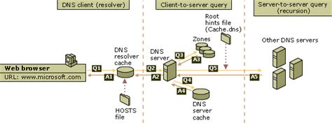 How Dns Lookup Works How Dns Query Works Domain Name System Dns