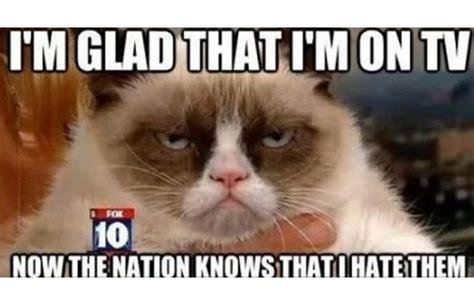 Grumpy Cat Snow Meme - i hate people grumpy cat meme