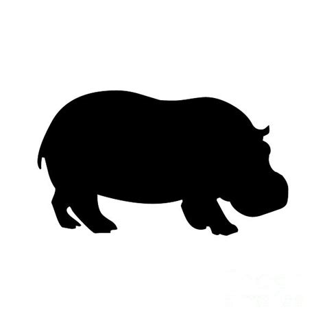 Hippo White hippo in black and white digital by jackie farnsworth