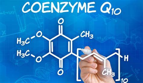 supplement timing when to take coenzyme q10 supplement timing