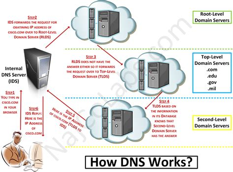 How To Do Dns Lookup Dns 171 Najco Labs