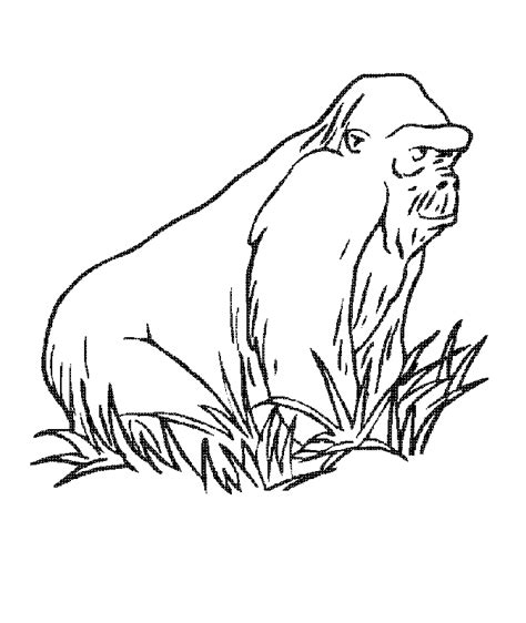 bamboo coloring pages az coloring pages
