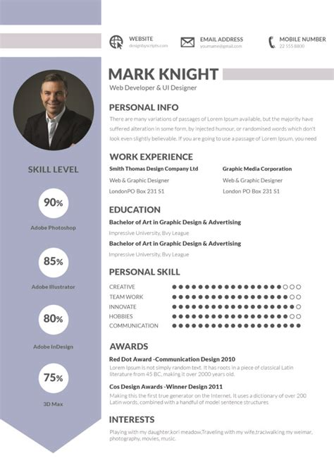 template cv professional guide to professional cv sles resume sles