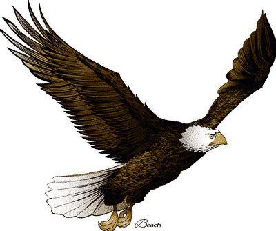 eagle clipart of the jungle clip arts of eagle