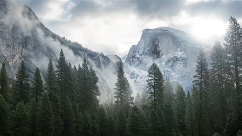 4k wallpaper os x wallpaper yosemite 5k 4k wallpaper 8k forest osx