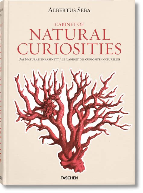 libro seba cabinet of natural cabinet of curiosities book fanti blog