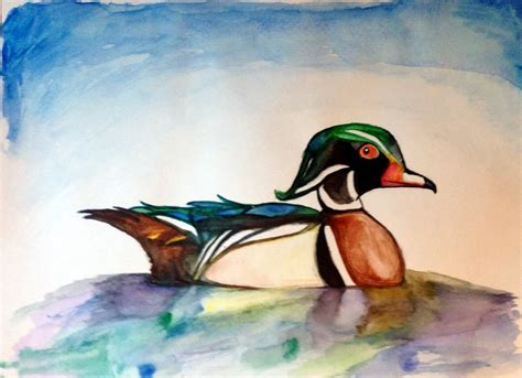 Watercolor Wood Duck By Manicmagician On Deviantart | watercolor wood duck by manicmagician on deviantart