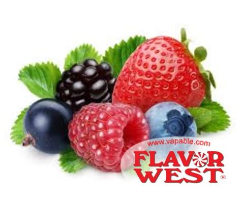 Flavor West Grapeberry 30ml Fw yumberry flavor west concentrate vapable
