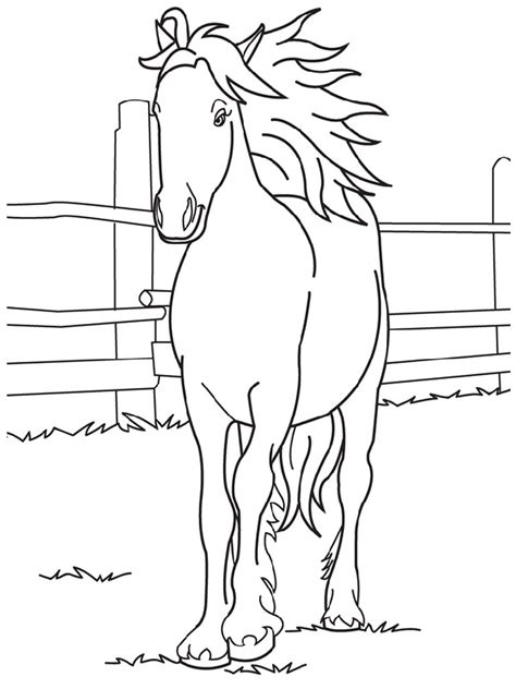 pictures of horses to color free and printable color pictures activity shelter