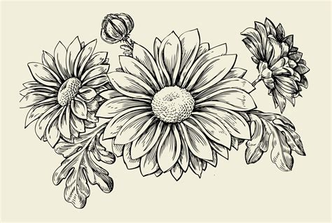 aster flower tattoo designs flower tattoos and their meaning