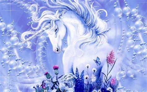 google images unicorn 1000 images about unicorn on pinterest unicorn art