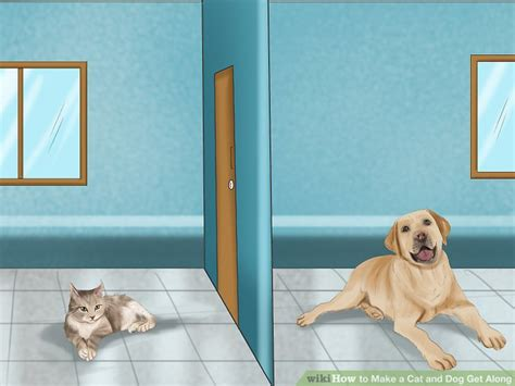 how to make dogs get along how to make a cat and get along 14 steps with pictures