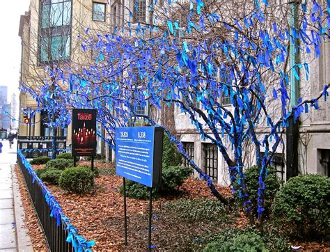 ribbon trees in chicago enclos ure