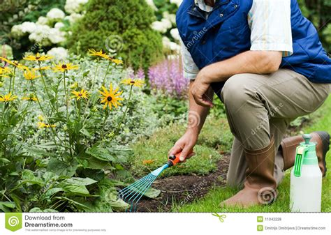 Is Working In The Garden by Working In The Garden Royalty Free Stock Photos
