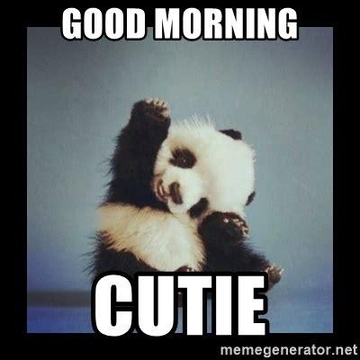 Morning Meme - good morning cutie cute baby panda meme generator