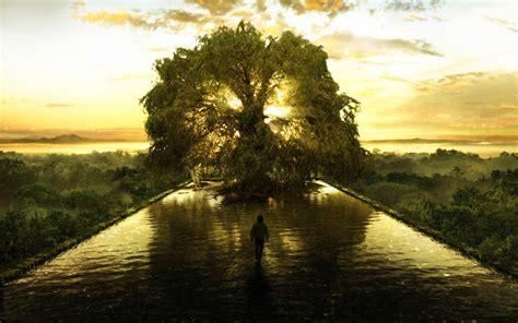 fond d 233 cran l arbre de vie gratuit fonds 233 cran l arbre