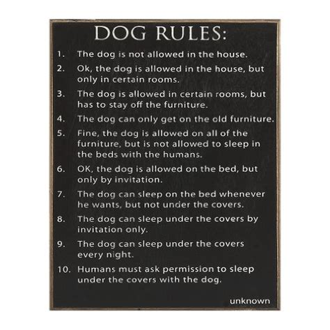 dog house rules top 5 best dog house rules for sale 2017 daily gifts for friend