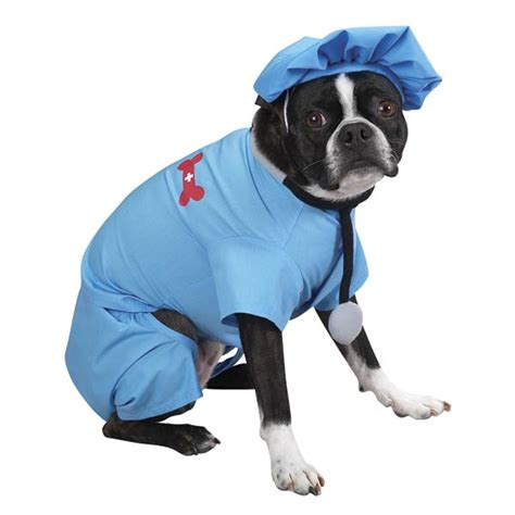 puppy doctor er doctor costume by casual canine baxterboo