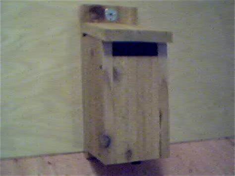 what direction should bluebird house face larry s bluebird corner