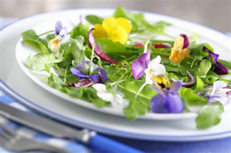 flower food recipe where to buy edible flowers recipes with edible flowers