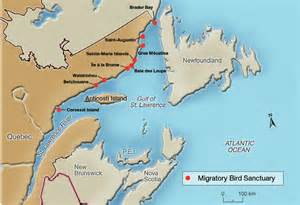 gulf of st canada map seabirds plan d laurent