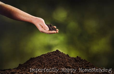what to add to vegetable garden soil awesome soil amendments for your organic vegetable garden