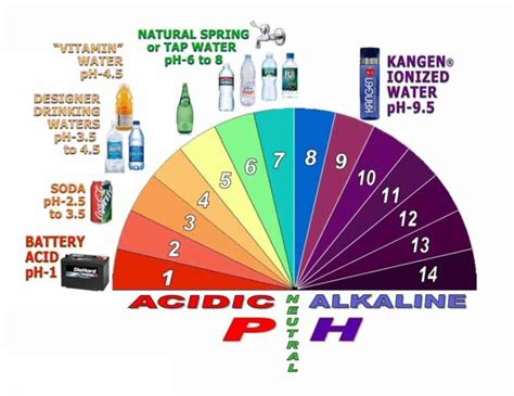 Detoxing And Low Ph Levels In The Morning by Kangen Water Detox And Heal Dinah S Kangen Water