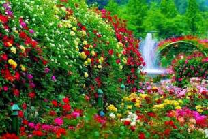 garden with a waterfall nature flowers waterfall