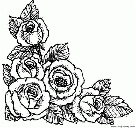 imagenes de flores dibujos dibujos flores rosas imagui