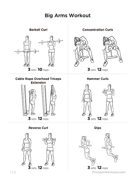 Mike Chang Bench Press by Search Results For Barbell Workout Printable Calendar 2015