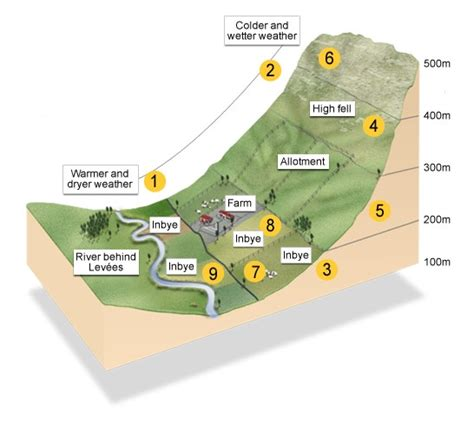 farm layout meaning bbc standard grade bitesize geography hill farming
