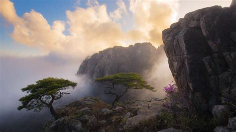 cloudy morning   mountainside hd wallpaper