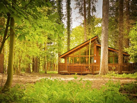 Log Cabins Sherwood Forest Uk by This Lofty Cabin Is Simply Astonishing 171 Country Living