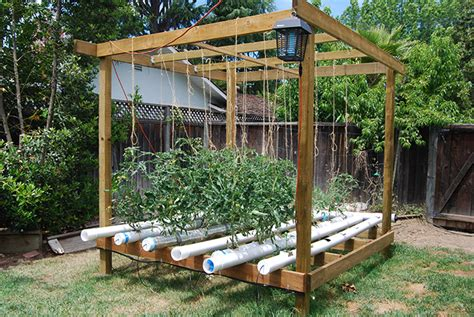 backyard growing system 5 great vegetable garden ideas