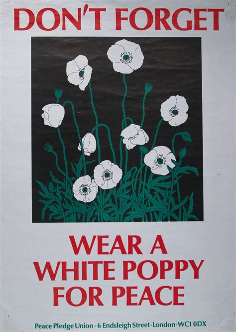 white poppy 301 moved permanently