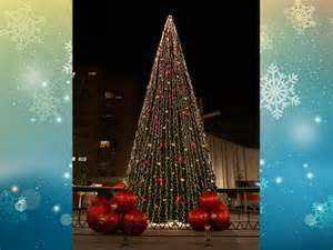 alquiler de 225 rboles de navidad para exterior de 15 metros