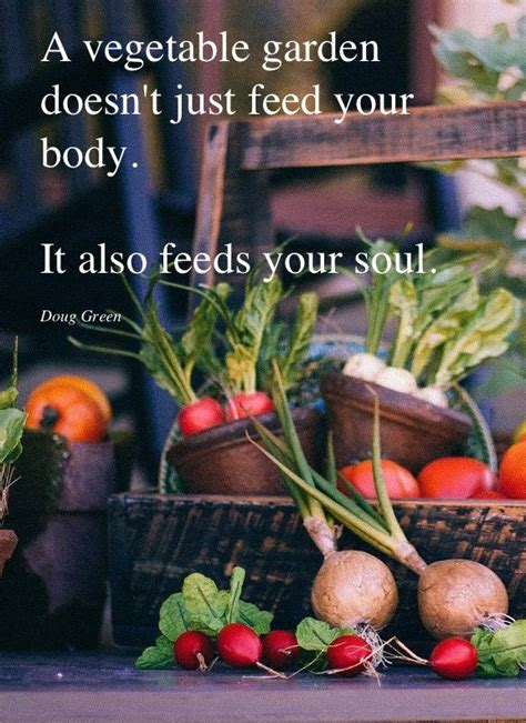Vegetable Garden Quotes 17 Best Images About Posters And Quotes On