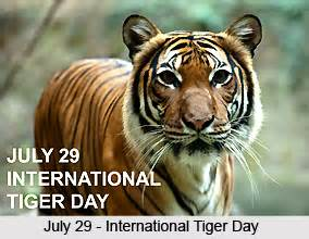 Essay On Tigers In India by Project Tiger In India Essay Topics Homework For You