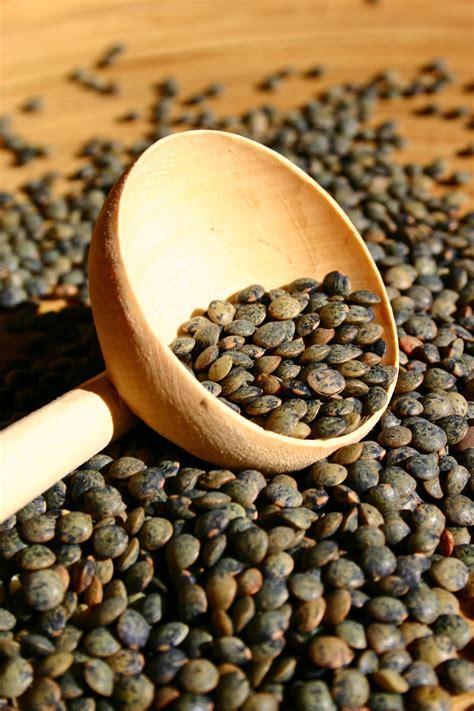 les les mangez des lentilles aliments sant 233 articles sant 233