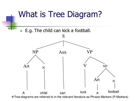 tree diagram of a sentence basic terms of tree diagram