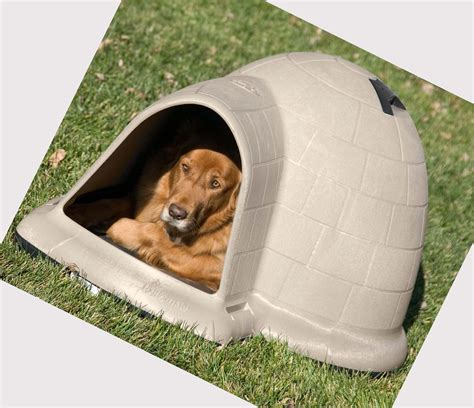 heat dog house heated dog house