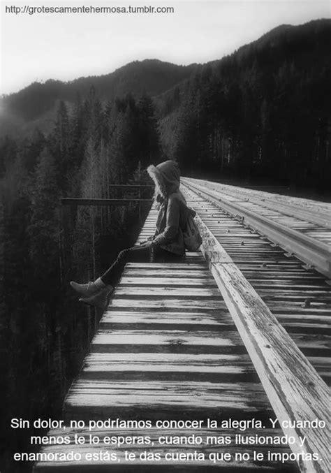 imagenes tumblr en negro bosque blanco y negro tumblr