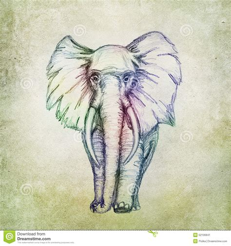 colorful elephant drawing stock illustration image 52106841