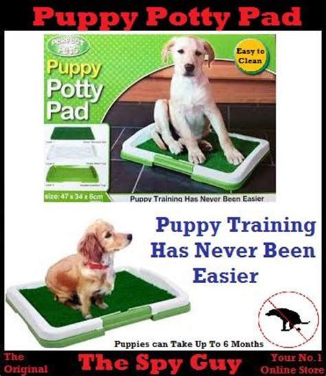 how to your to potty on a pad habitat rescue potty pad your puppy leads