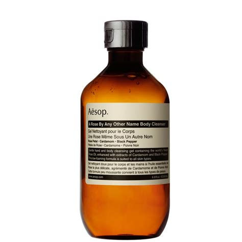 Coriander Liver Detox by Best 25 Cleanser Ideas On Liver Detox
