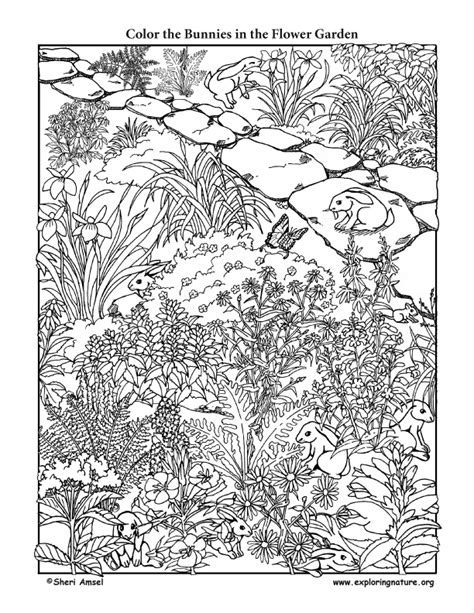 flower garden coloring pages awesome flower garden coloring page with flower garden