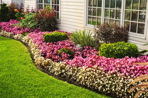 plant bed have flower beds and add colour to your home decorifusta
